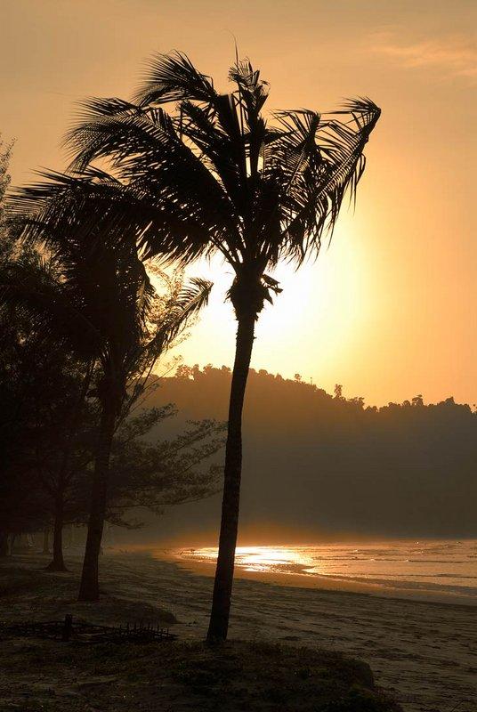 Пляжи пустынны. На километры песка нет ни одной живой души, кроме все тех же суетливых ракообразных, да прочей бродящей в прибойной полосе мелкой живности.