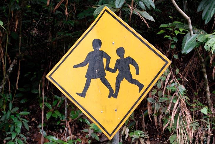 А это уже веселые картинки. Девочка-насильник тащит слабо сопротивляющегося маленького мальчика в чащу леса.