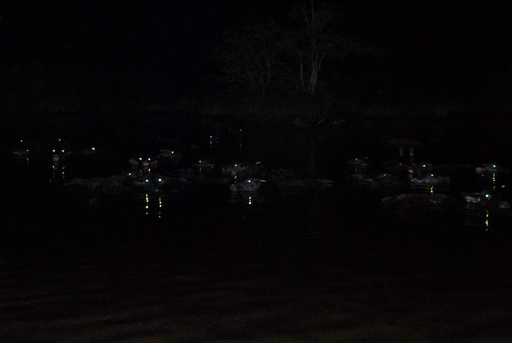 Страшные горящие глаза водяных тварей окружают лодку. Они все ближе и ближе.