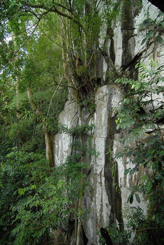 Вот такая совершенно вертикальная скала. Любопытно, кому пришло в голову когда-то по ней забраться? Ведь кто-то же первым открыл вход в пещеру.