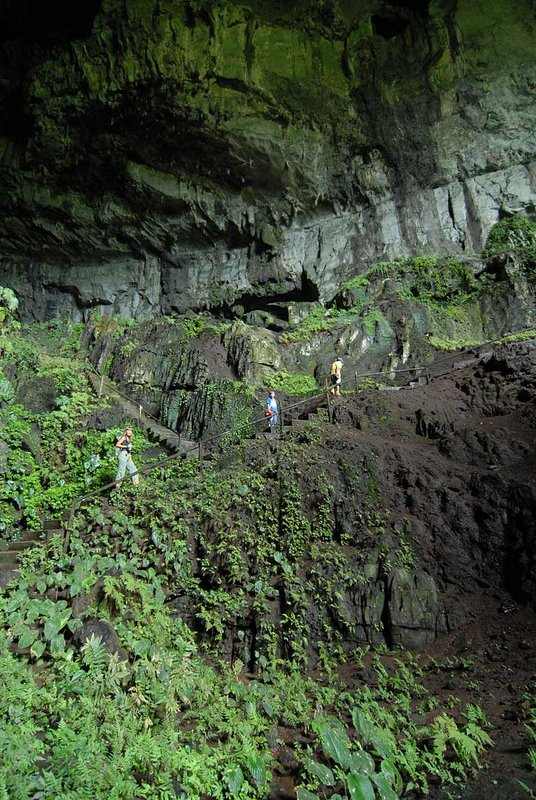 Это собственно и есть самый большой зал пещеры. В одной из стенок есть дыра к солнцу. Что позволяет расти тут тенелюбивым растениям на обильно удобренной летучими мышами почве. Ну и немного можно фотографировать. Хотя таки достаточно темно.
