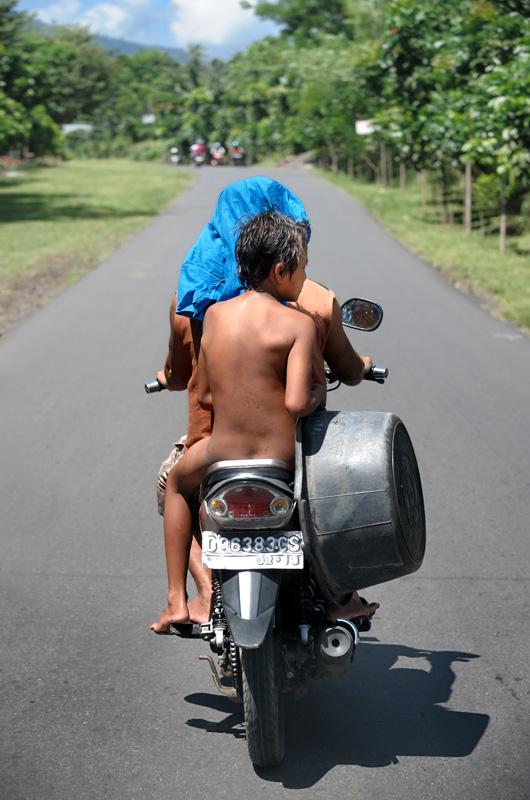 Сулавеси — принадлежащий Индонезии крупный остров в Тихом океане, имеет весьма причудливую форму с сильно изрезанной береговой линией. В силу географических причин (гор и прочих болот), остров разделен на достаточно обособленные друг от друга части, слабо связанные между собой.