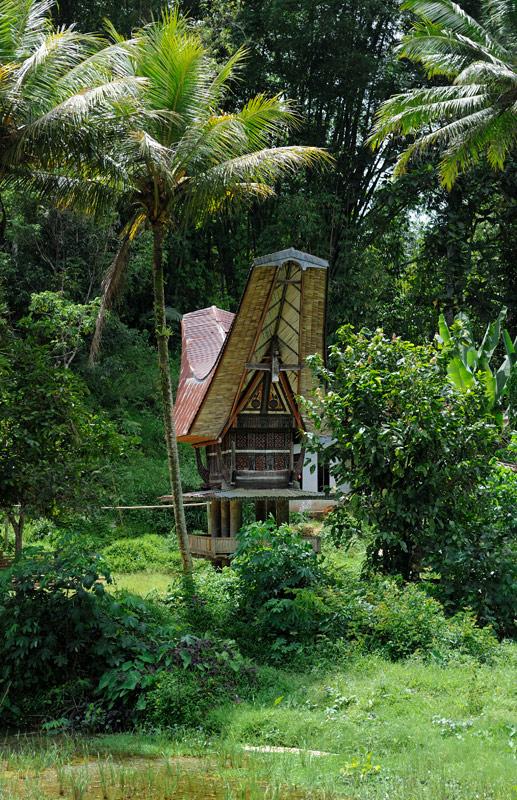 Запасы выращенного риса складируются вот в таких будках. Сверху лежит рис, снизу на помосте — счастливые рисоводы.