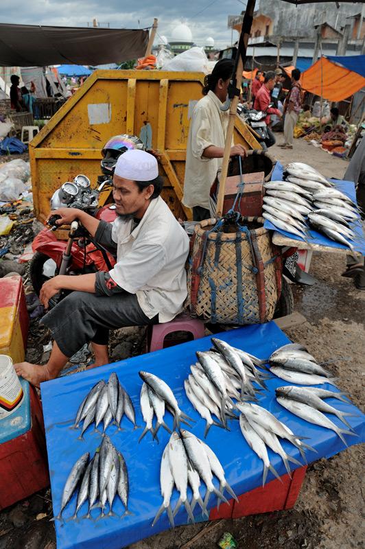 Только торговцы рыбой выкладывают свое добро на крышки пенопластовых ящиков.