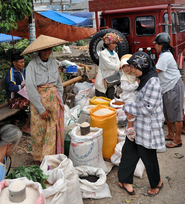 И, наконец, самый ценный и основной продукт — рис.
