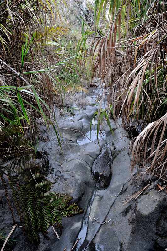 Ядовитые газы испускают не туристы, измученные прыжками по каменным неровностям, а сие есть продукт вулканической деятельности.