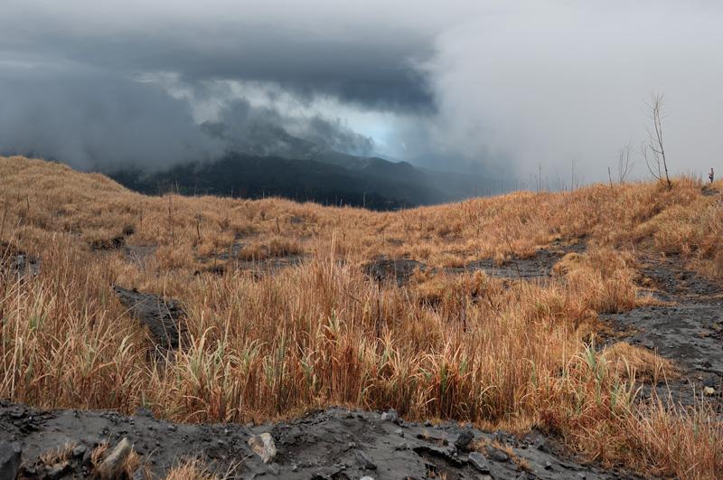 Сегодня вулкан явно не в настроении демонстрировать свои потроха досужим зевакам. Оставляю семейство в овраге, дальше передвигаюсь в гордом одиночестве, при прохождении очередного облака газов, падая и вжимаясь в покрытый лужицами кислоты грунт. Если удачно выбрать ложбинку, у самой земли остается небольшой слой пригодного для дыхания воздуха.