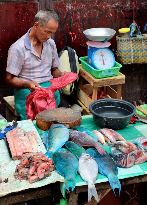 Синие тушки несъедобного вида — это рыбы-попугаи (Scarus ghobban), примечательны тем, что питаются кораллами, с хрустом разгрызая известняк мощным клювом. Как видим, самими рыбами-попугаями питаются филиппинцы, разгрызая оных без всякого хруста. Вон та красноватая тушка сверху — это рифовый окунь (Epinephelus morio), наиболее уважаемая филиппинцами рыба, за свои выдающиеся вкусовые качества называемая лапу-лапу в честь того самого злобного вождя, укокошившего Магеллана.