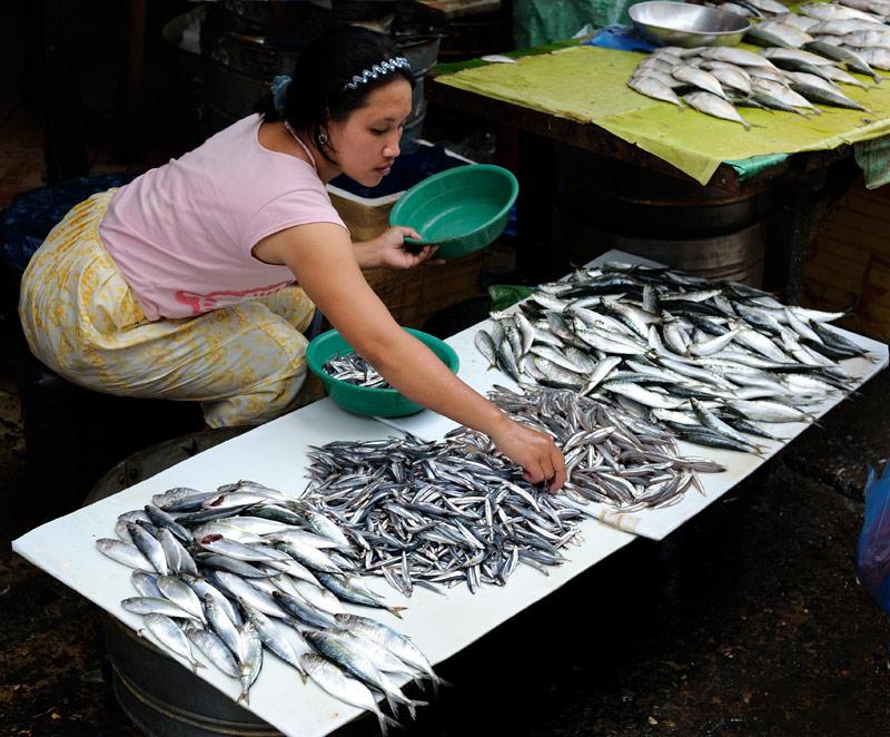 А вот и более привычные для желудка сардины и прочие рыбьи дети.
