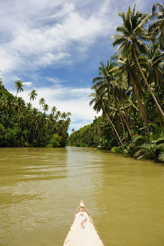 Бохол — небольшой остров в Тихом океане, в самом центре группы Висайских островов, относящихся к Филиппинам. Центр одноименной провинции. Остров знаменит тарсирами, Шоколадными холмами и белыми песчаными пляжами.