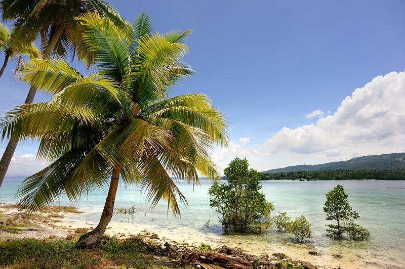 Весьма сложно описывать остров, примечательный, главным образом, пляжами и пальмами.
