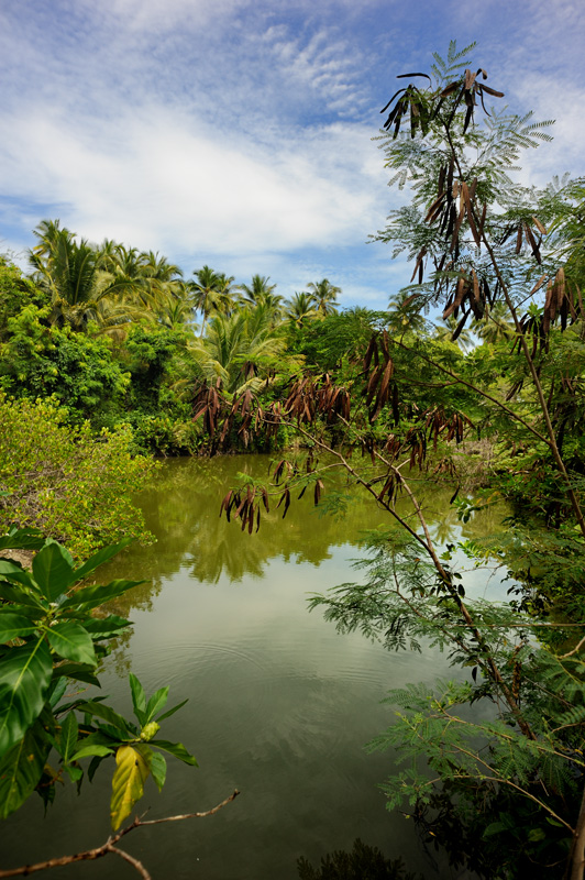 Внутренность острова Малипано.