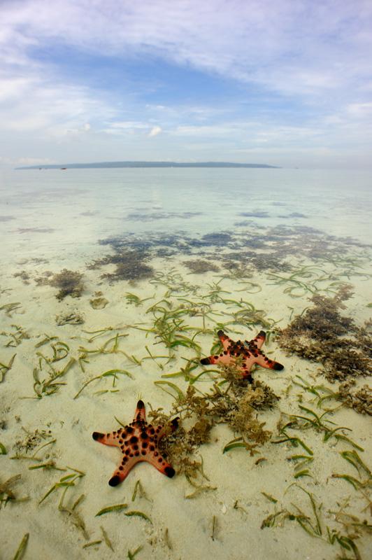Ну и несколько пейзажей на подступах к коралловому рифу.