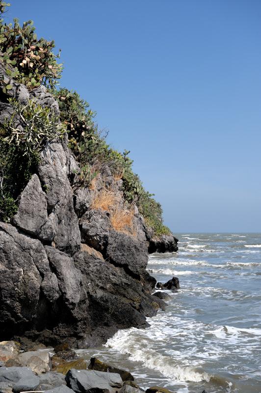 В окрестностях пещеры берега приветливо заросли кактусами. Шаг в сторону по тропе, и вот уже есть время подумать о вечном, пока супруга выдергивает у вас из задницы тонкие иглы опунции.