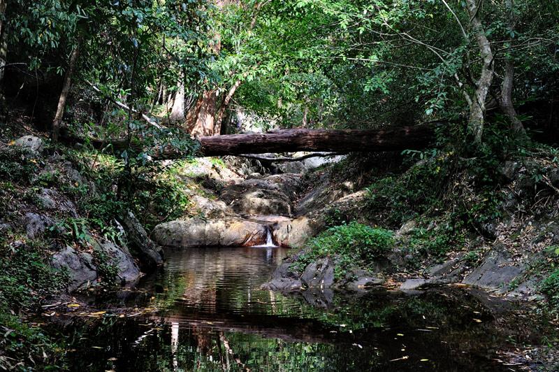 На карте на самой границе с Бирмой обнаружили одинокий водопад в джунглях. Прокатились, посмотрели.