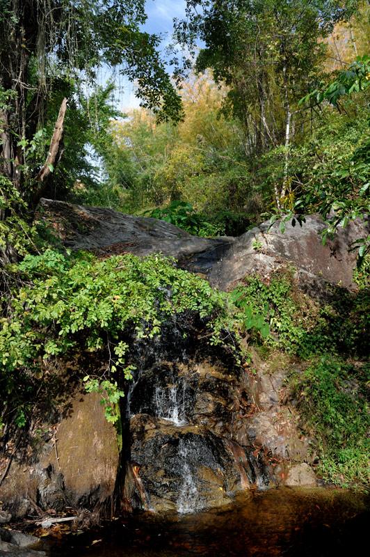 Зато весьма бодрит поездка на лысой шоссейной резине по лесным тропам.