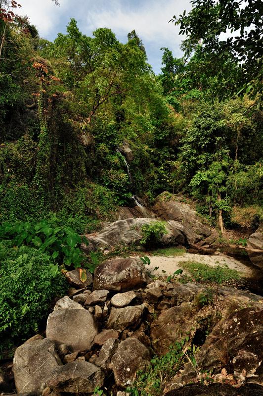 Джунгли на границе буйные, без следов людей и какой-либо хозяйственной деятельности. В целом, лес выглядит мирно, не считая большого количества ползающих под ногами змей.