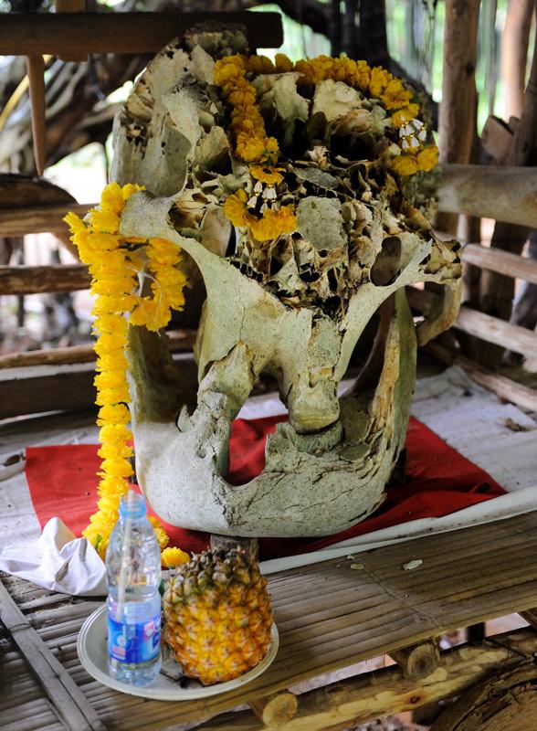 Разве что поклонение черепу слона намекает на анимистические религиозные пристрастия каренов.