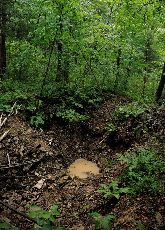 Интересно, что наиболее крупные куски метеорита были найдены в мелких воронках. Крупные же кратеры (самый большой диаметром 26 метров) содержали лишь мелкие осколки и метеоритную пыль. Ныне воронки и кратеры сохранили свой первозданный вид, лес внутри на камнях так и не вырос.