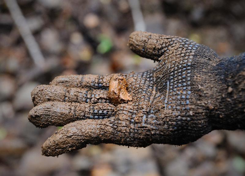 А вот и успешный результат поисков — Сихотэ-Алинский метеорит — маленький оплавленный кусок металла. Был отпущен подрастать дальше, по принципу «поймал — отпусти». На этой радостной ноте позвольте завершить сие краткое краеведческое повествование.