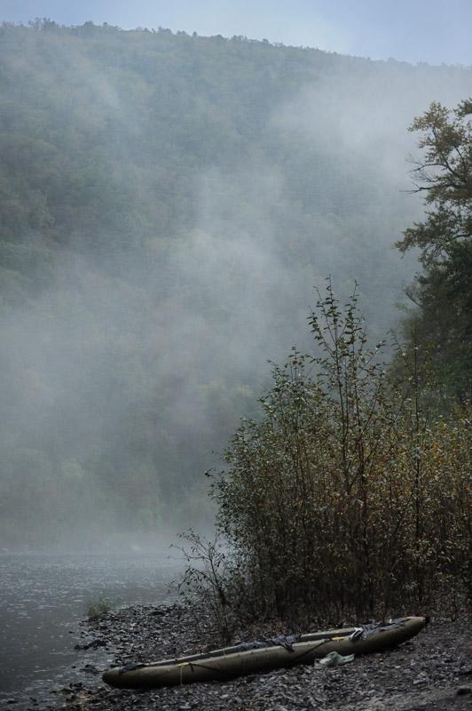 Медленно пятясь и спотыкаясь о сплетения корней, наша группа также углубилась в лес. К стоянке возвращались быстрым шагом, почти бежали, сбивая дыхание, не в силах переварить увиденное.