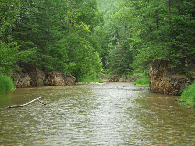 Сама речка мелкая, но изобилует глубокими ямами и симпатичными плесами. Жаль хариус там не водится.