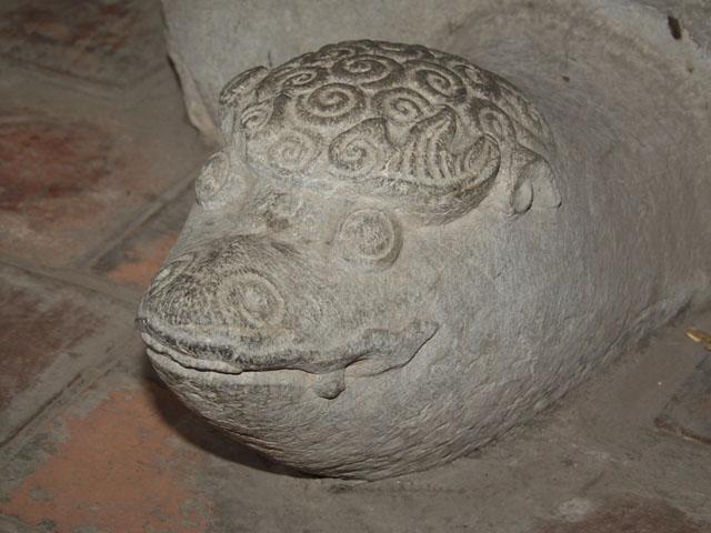 У каждой мудрой черепахи своя неповторимая морда.