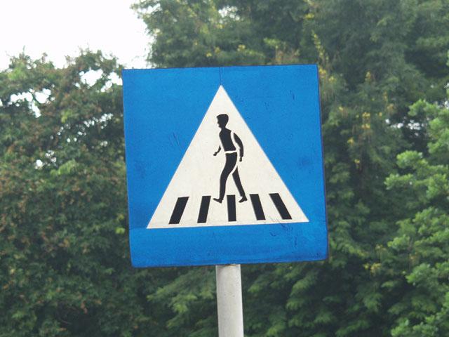 А это знак с угрозами. Заранее показано, какую часть тела оторвет, если процесс перехода на другую сторону дороги завершится хуевым образом.