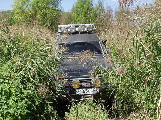 Дорога к водоему обильно поросла разной ботвой. Пришлось Сафарику выполнять роль сенокосилки.