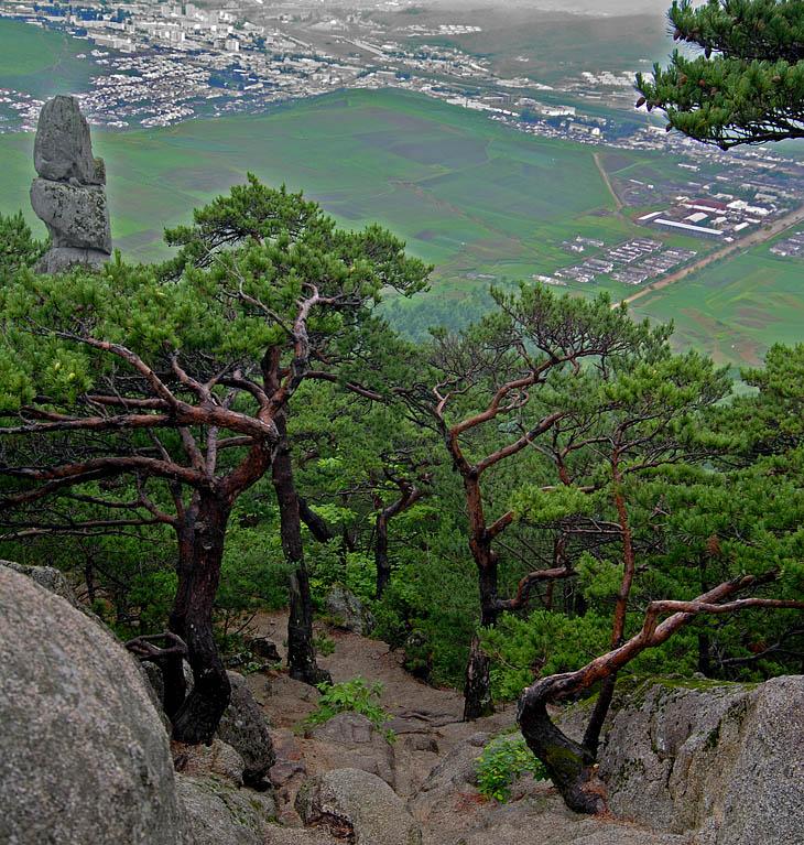 Природа красивая до самоизумления. Какая-то просто нереальная. Картинно корявые сосны раскинулись бесконечными лесами на причудливом горном рельефе.
