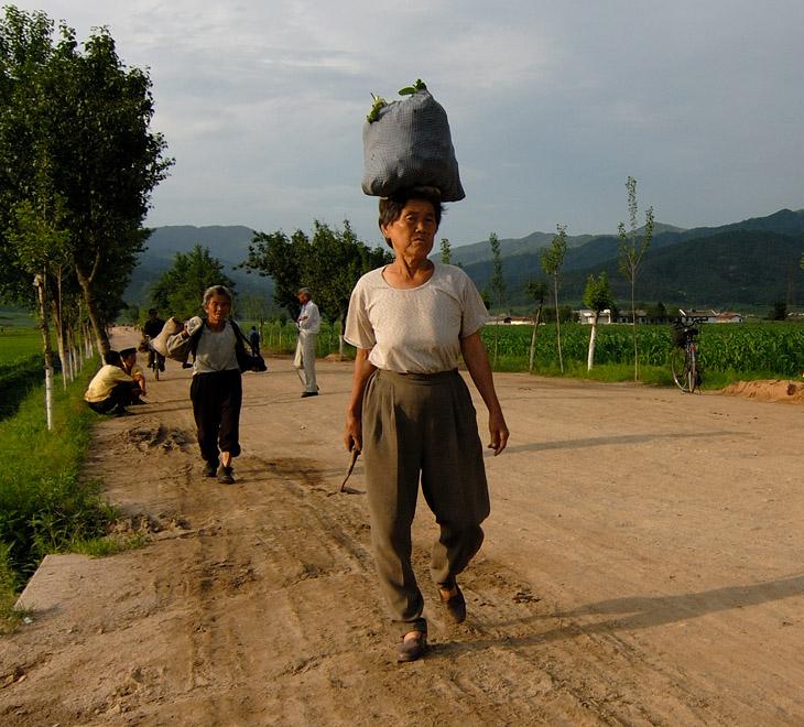 Северная Корея — заповедник непуганых коммунистов. Раз в неделю паровоз увозит одинокий вагон от города Уссурийска через станцию Хасан в сию «Страну утренней свежести». Какова она, эта свежесть по утрам, русскому человеку лишний раз напоминать не надо.