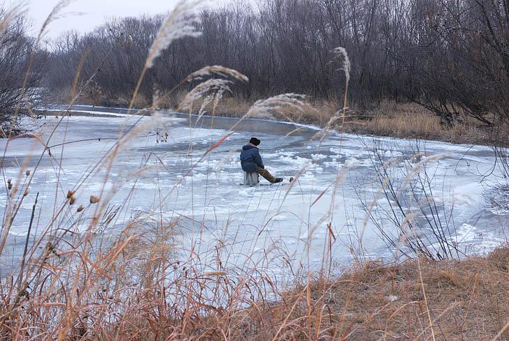 Знаменательное событие, первый встреченный мной в этом сезоне зимний рыбак. На наших глазах выудил из дырки во льду небольшого ленка, потом долго оглядывался, заметили ли зрители этот момент триумфа.                                         Вот собственно и все краткое повествование.