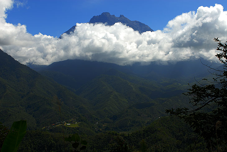 Фауна это хорошо, но славен Борнео еще и своими геологическими морщинами. На севере острова находится ядреный горный массив               Кинабалу, с однойменной горой высотой четыре с лихуем тысячи метров. Сия вершина является объектом туристического паломничества (хотя в               целом Борнео сложно назвать Меккой туризма), восхождение занимает двое суток туда и еще немного обратно. По большей части внешний вид               горы не очень впечатляет, автомобильная дорога идет через окрестные перевалы двухкилометровой высоты, на их фоне грандиозность               основного объекта несколько снижается. Также и запечатлеть саму вершину дело исключительно небывалого везения. За многие часы, что наш               пикап накручивал по горной дороге, облака рассеялись лишь раз, открыв нашему взору крейзанутую, как и все на Борнео, форму вершины. С               самой горы тоже нихрена не видно, кроме наиплотнейшего тумана. Часть пути гондурасит непрерывный дождь. С вершины видно лишь небо, да               густые облака вокруг. К сожалению удобного бомжевища, в котором можно было бы дождаться хорошей погоды, на вершине нет. И в качестве               обзорной площадки сия возвышенность малопригодна.