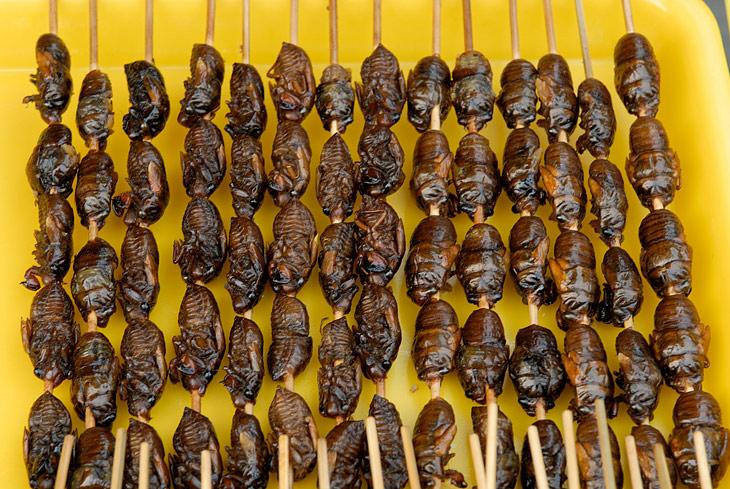 Уж я отвел таки душу, поедая насекомые деликатесы. Особенно понравились молодые скорпионы. Изобилие всяческих жуков и их личинок, аппетитно нанизанных на длинные бамбуковые зубочистки.
