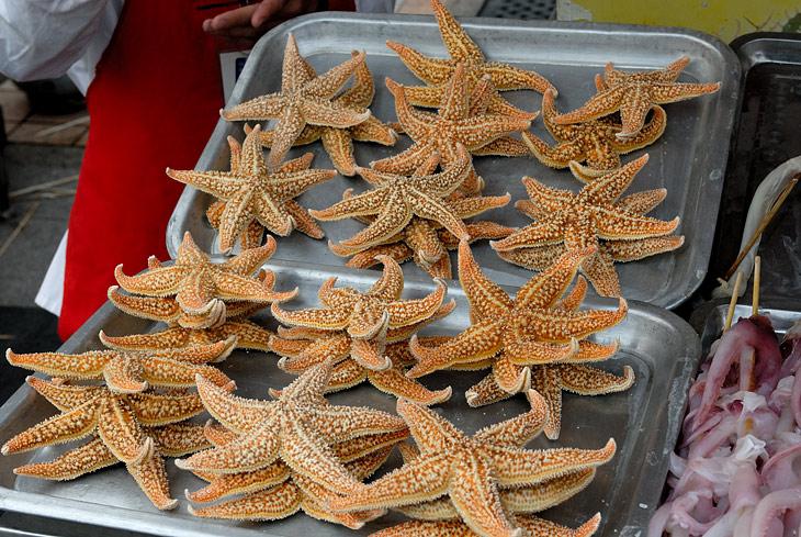 Банальные морские звезды. Надо запомнить на случай, когда рыба хреново ловиться будет.