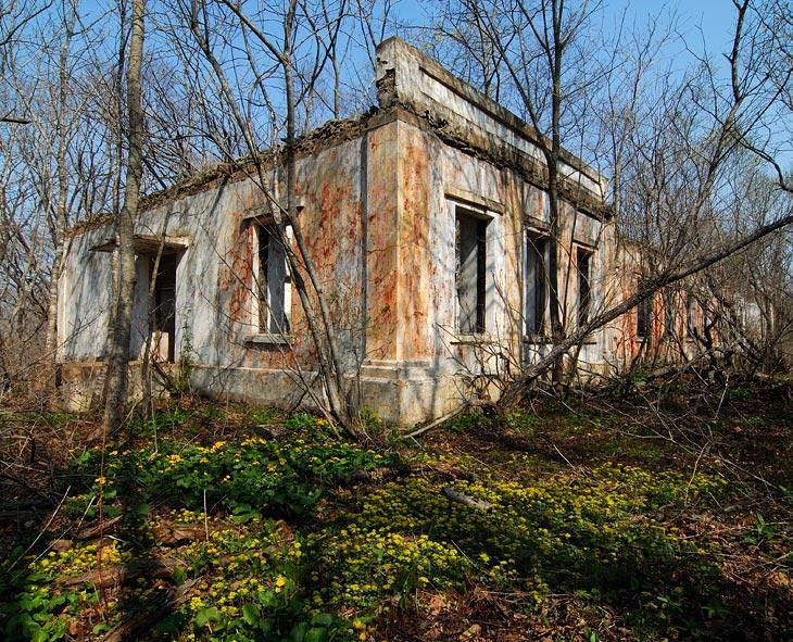 Руины казарм. Весьма добротно построенные здания, но, судя по толстым, растущим внутри деревьям, заброшены много лет назад.