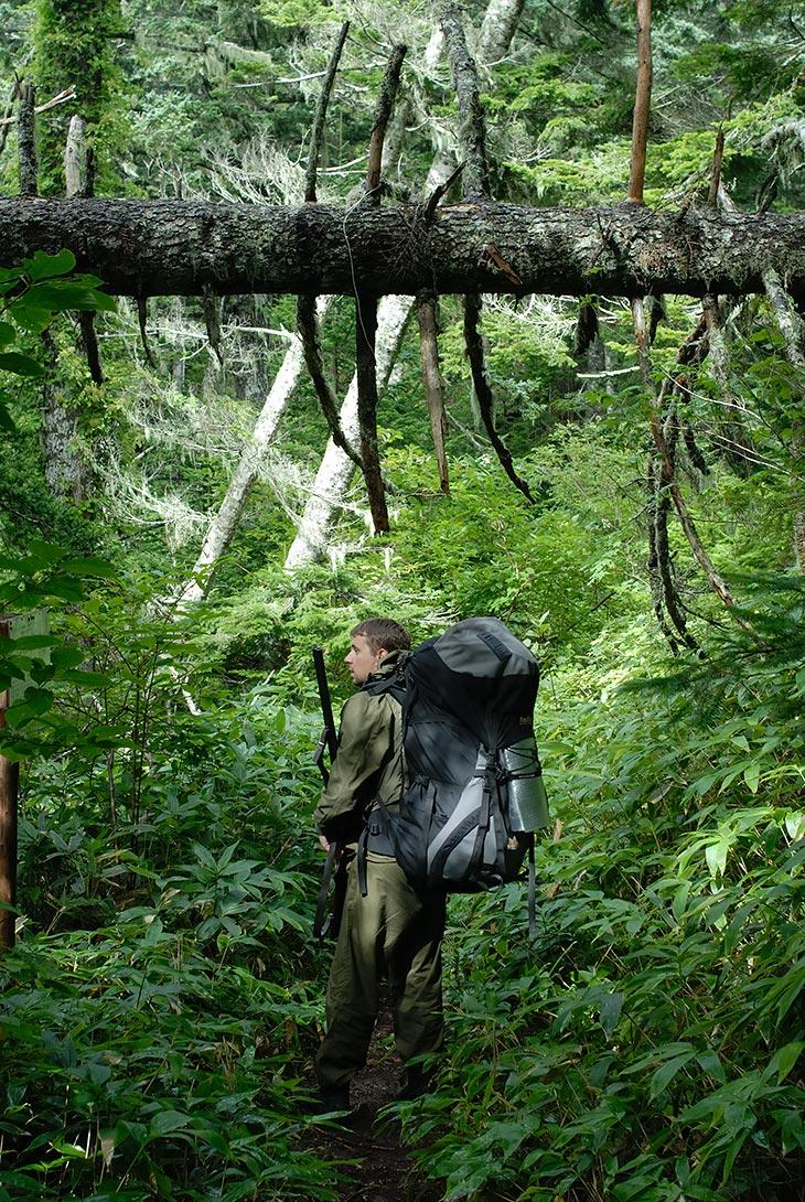 Едва ослабел встретивший нас мощный тайфун, как под первыми лучами солнца наши жаждущие приключений организмы вломились в бурные               заросли кунаширской ботвы. Лес представляет собой типичные джунгли с уходящими к небу лианами и непроходимой щетиной густого бамбука.               Если отвлечься от незнакомых запахов, живо напоминает дебри Борнео, по которым я слонялся в начале года.