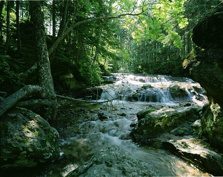 На впадающих в реку горячих источниках можно построить небольшие запруды из камней, регулируя поток воды выставлять желаемую температуру в получившейся минеральной ванне. Фотографировать отмачивающиеся тела я не стал, зато               можете посмотреть на мелкий лесной водопад.