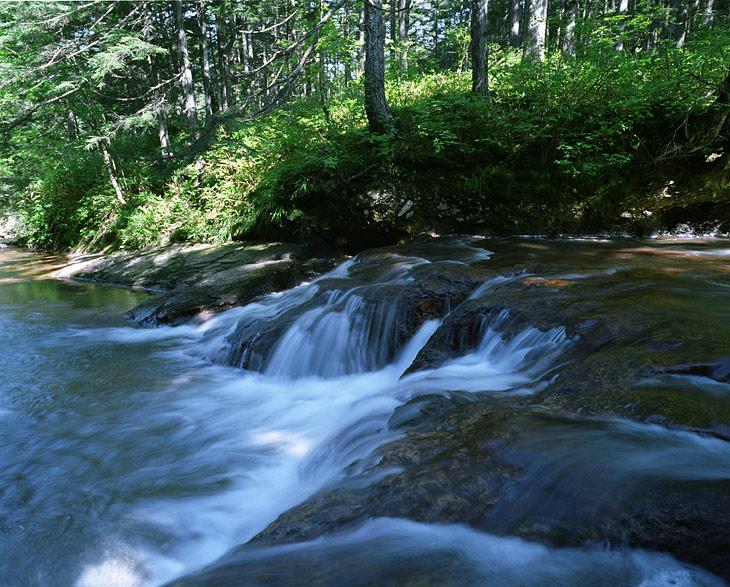 Реки делятся на кислые - вытекающие со склонов вулканов и представляющие собой по сути подогретую смесь кислот, и нерестовые - наполненные трупами отнерестившихся лососей и несущие свои смрадные воды в океан.