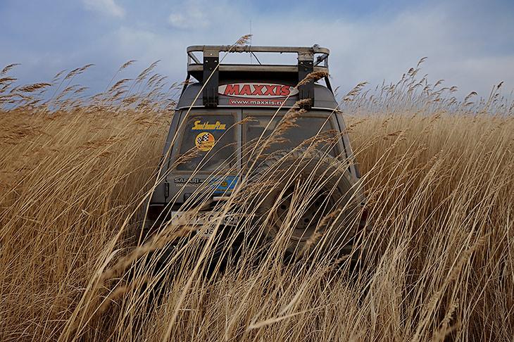 В травяных зарослях не видно ни дорог ни направлений. Да и не ездит тут никто.