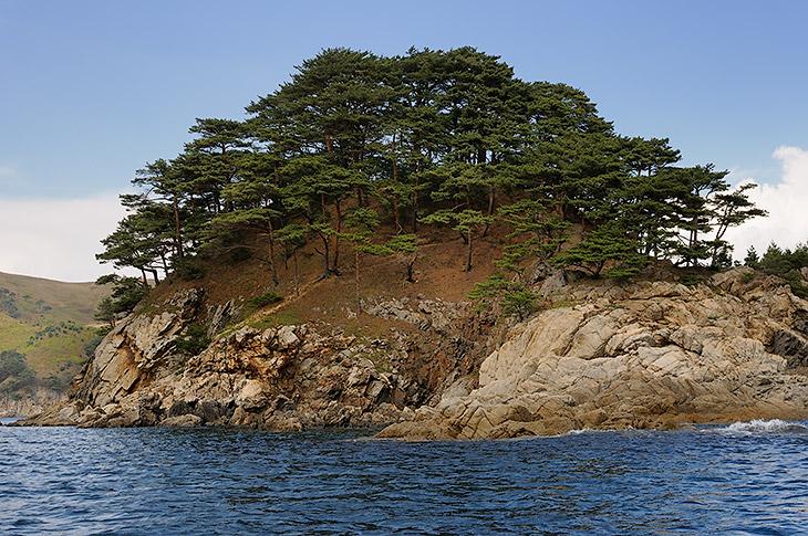 Впрочем, утыканные корявыми соснами берега являют собой достаточно живописную картину, независимо от плавсредства, на котором их               посещаешь.