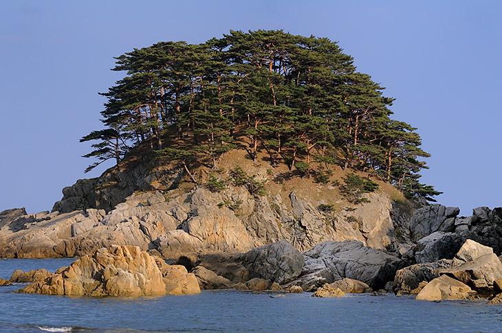 А глаз радовали острова с елками, да усеянное морскими ежами дно, хорошо видимое в прозрачной воде.