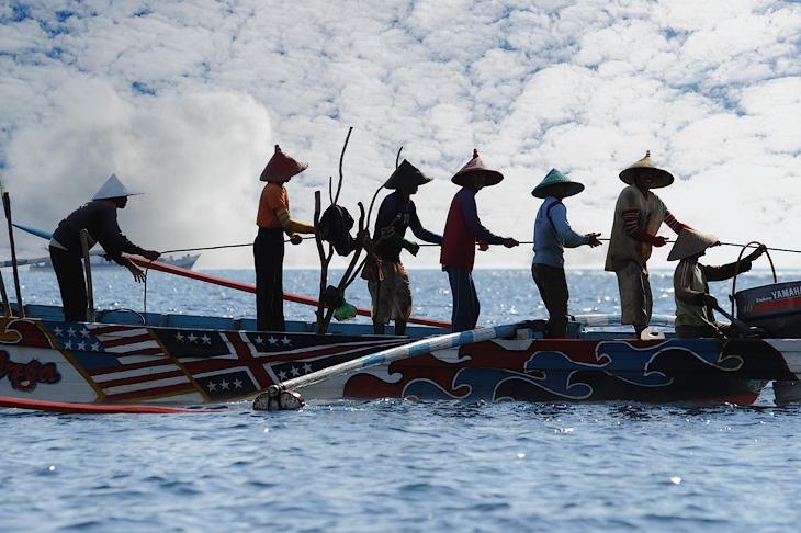 Лодки с рыбаками в остроконечных шляпах в профиль напоминают бревна поросшие мухоморами.