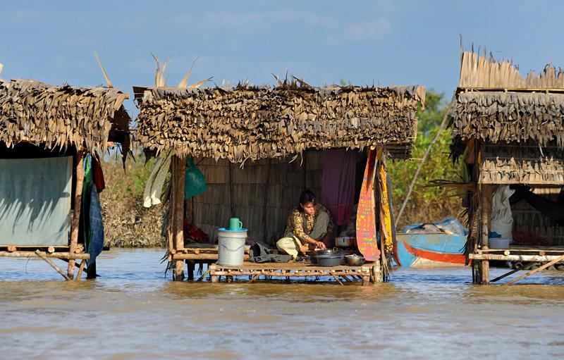 Праздно перемещающимся по озеру путешественникам полагается восхищаться кхмерскими и вьетнамскими плавучими деревнями, а также             биосферными заповедниками с бесчисленными болотными птицами. В птицах я мало что смыслю, да и съемка пернатых требует более вдумчивого             подхода, поэтому взору досточтимых читателей предложу лишь бескрылых обитателей водного мира.
