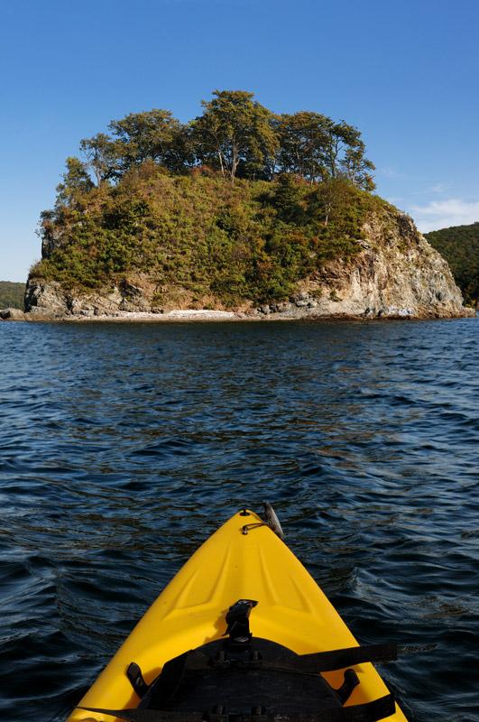 Остров внутри острова —Папенберга находится в бухте Новик, в свою очередь, находящейся внутри острова Русский.