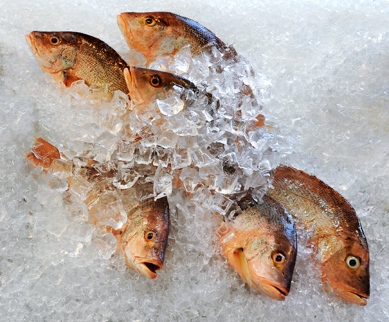 Если же вам не по вкусу подлинная экзотика, местные харчевни предложат более традиционные трупики рыб и прочие скучные морепродукты.