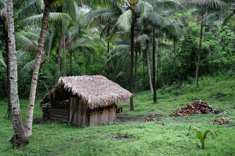 Многочисленная диковинная живность соседствует с шумной деревушкой и снующими вдоль побережья местными жителями, перешедшими от             выращивания кокосов к обслуживанию туристов. В деревне есть приличные места для ночлега и обширный выбор гидов для прогулки по парку.