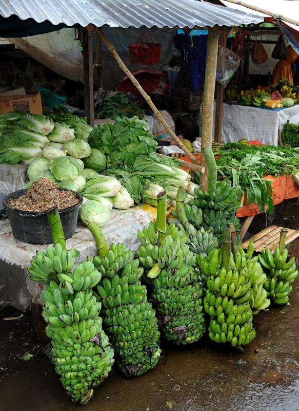 Томохон (Tomohon) — небольшой городишко в Северном Сулавеси, приютившийся на склоне вулкана Локон. В окружении укутанных туманом гор и             ржавых синих автобусов, на окраине города расположен вполне себе традиционный продовольственный рынок.