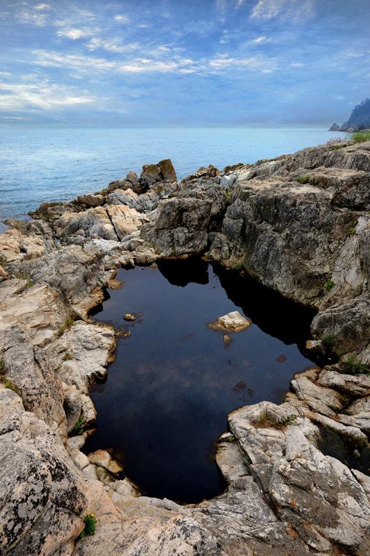 Фактическое отсутствие сколь-нибудь существенных приливов и отливов приводит к появлению в скалах у самой воды вот таких цветущих луж, вместо полосы литорали. То черные, то желтые, то зеленые, населены они тиной и болотными               насекомыми.