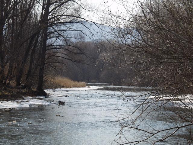 Река уже практически вся вскрылась.